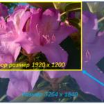 Как изменить размеры фотографии